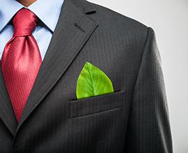 ממונה אקולוגיה ואיכות הסביבה